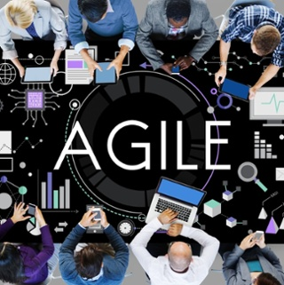 How to develop an agile organisation?